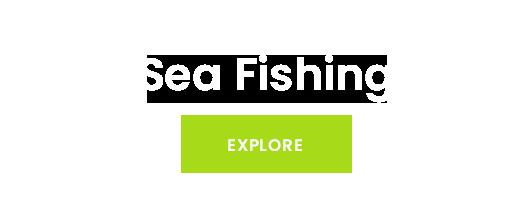 KAMASAN WORM FISHING HOOK TackleBase